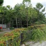 sunway-cassia-nature-park